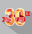 Discount 30 Percent Off vector image