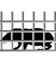 Guinea pig in cage vector image vector image