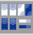 oriental round patterns in white and blue colors vector image