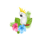 parrot white cockatoo with colorful exotic flowers vector image vector image