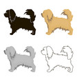 pekingese icon in cartoon style for web vector image vector image