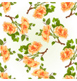 seamless texture branch yellow hibiscus vector image vector image