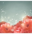 Shining flowers roses background vector image vector image