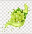 white grape branch in grape juice splash vector image vector image