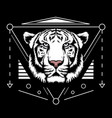 white tiger scared geometry vector image vector image