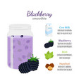 blackberry smoothie organic recipe ingredients vector image vector image