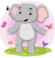 cartoon happy elephant with butterflies in gra vector image vector image