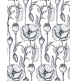 floral seamless pattern with hand drawn poppy vector image