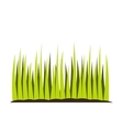 Growing grass flat icon vector image
