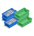 isometric fresh fish in plastic crate isolated on vector image