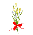 lovely fresh tulip bouquet with red ribbon vector image vector image