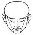 male face shown vintage engraving vector image vector image