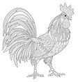 rooster cock adult coloring page vector image vector image