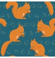 Seamless pattern with squirrels vector image