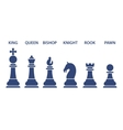 Set of named chess piece icons vector image