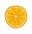 slice of fresh or dry orange citrus fruit vector image