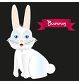 White rabbit sitting isolated on black background vector image vector image