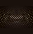 gold net pattern over dark background vector image vector image