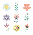 scandinavian herbs and flowers set vector image vector image