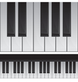Seamless piano keys vector image