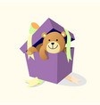 bear gift vector image
