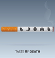 May 31st World No Tobacco Day poster vector image