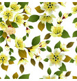 seamless spring background with white flowers with vector image vector image