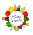 set of healthy vegetables made in cartoon style vector image