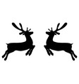 two reindeers on a white background jump to each vector image vector image