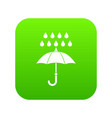 umbrella and rain icon digital green vector image vector image