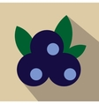 Blueberries flat icon vector image