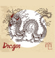 chinese zodiac symbol of etching dragon vector image vector image