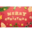 Christmas gingerbread cookies and sweets vector image