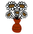 daisy in vase on white background vector image vector image