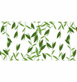green weeds pattern vector image
