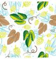 hop seamless pattern ornamental background vector image