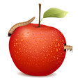 red apple with two worms vector image vector image