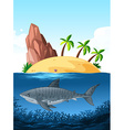 Shark swimming under the ocean vector image vector image