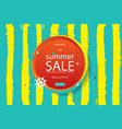 summer discounts banner vector image vector image