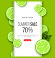 summer sale banner with sliced lime pieces leaves vector image vector image