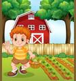 a boy harvest vegetable vector image vector image