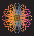 ethnic floral colorful tribal circle mandala vector image