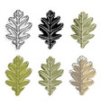 collection oak leaves isolated on white vector image