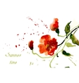 Flowers poppies red with splashes of watercolor vector image vector image