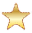 gold star in rope vector image vector image