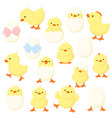set cute cartoon chicken in various poses vector image vector image