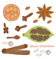 spices collection 1 vector image
