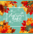 abstract autumn sale background with falling
