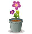 Pot plant vector image vector image