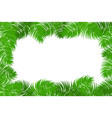 summer jungle palm leaf frame vector image vector image